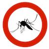 Komár Mosquito