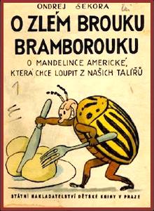 P beetle